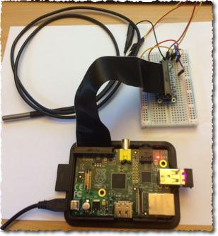 PI sensor